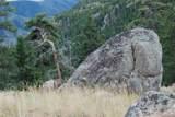 13927 Dancing Bear Trail - Photo 7