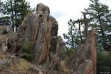 13927 Dancing Bear Trail - Photo 9