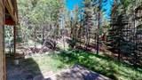 239 Apache Road - Photo 30