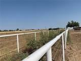 5443 County Road 37 - Photo 26