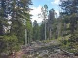 2500 Santa Fe Mountain Drive - Photo 10