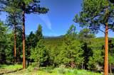 2808 Quartz Ridge Road - Photo 4