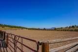 2065 Cowboy Way - Photo 24