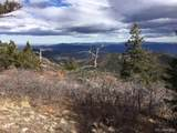 Trail Drive - Photo 10