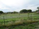 3439 D Road - Photo 12