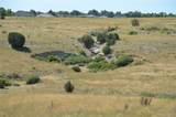 Red Creek Springs Road - Photo 21