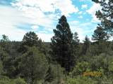 Tbd Peak View Rd 47 - Photo 10