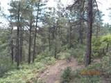 Tbd Peak View Rd 47 - Photo 11