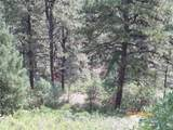 Tbd Peak View Rd 47 - Photo 13