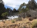 7749 Inca Road - Photo 5