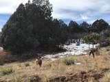 7749 Inca Road - Photo 9