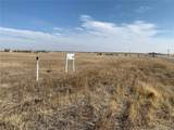 5.5 Acres Vacant Land - Photo 4