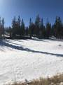 450 Teton Trail - Photo 16