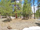 18273 Trail West Drive - Photo 8