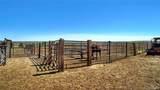 20301 Silverado Hill Loop - Photo 14