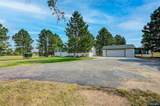 10528 Black Forest Drive - Photo 6
