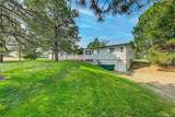10528 Black Forest Drive - Photo 7