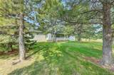 10528 Black Forest Drive - Photo 8