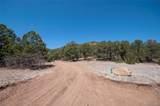 420 Sunnybrook Trail - Photo 19