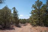 420 Sunnybrook Trail - Photo 23