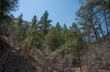 420 Sunnybrook Trail - Photo 29