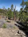 1319 Sequoia Drive - Photo 15