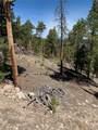 1319 Sequoia Drive - Photo 23