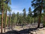 1319 Sequoia Drive - Photo 3