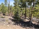 1319 Sequoia Drive - Photo 33