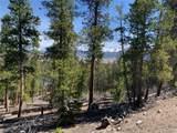 1319 Sequoia Drive - Photo 34