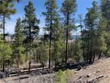 1319 Sequoia Drive - Photo 35