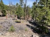 1319 Sequoia Drive - Photo 6