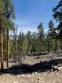 1319 Sequoia Drive - Photo 7
