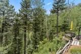 6250 Waterfall Loop - Photo 34