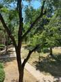 1304 Parker Road - Photo 25