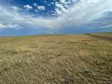 Rolling Vista Trail - Photo 1