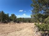 462 Redtail Trail - Photo 12