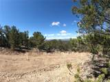 462 Redtail Trail - Photo 13