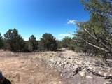 462 Redtail Trail - Photo 14