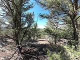 462 Redtail Trail - Photo 2
