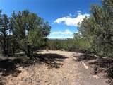 462 Redtail Trail - Photo 20