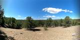 462 Redtail Trail - Photo 27