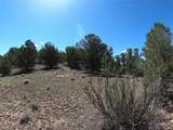462 Redtail Trail - Photo 31