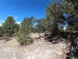 462 Redtail Trail - Photo 6