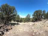 462 Redtail Trail - Photo 7