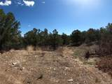 462 Redtail Trail - Photo 9