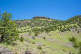 1746 Castle Mountain Pass - Photo 16