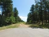 4523 Cheyenne Drive - Photo 1