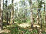 4523 Cheyenne Drive - Photo 33
