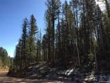 Pinecrest Road - Photo 2